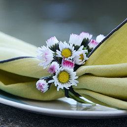 Poésie florale