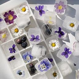 Eiswürfel mit Blüten