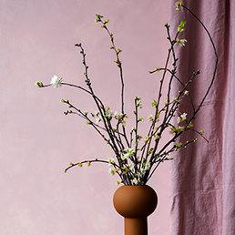 Les rameaux en fleurs