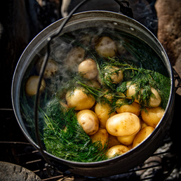 Kartoffeln mit Dill