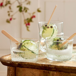 Gin mit Popsicles