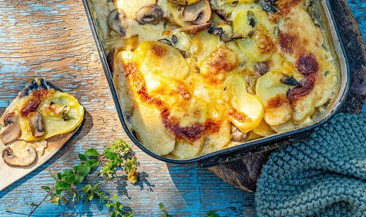 Kartoffel-Pilz-Gratin